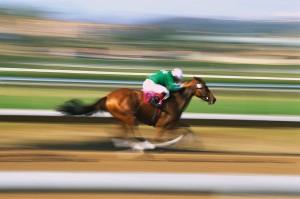 Horse Racing at Track